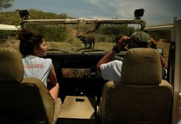 Game Reserve Conservation 4